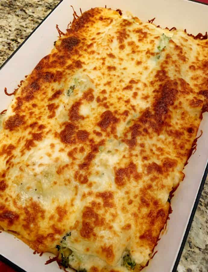 Chicken Broccoli Alfredo Lasagna