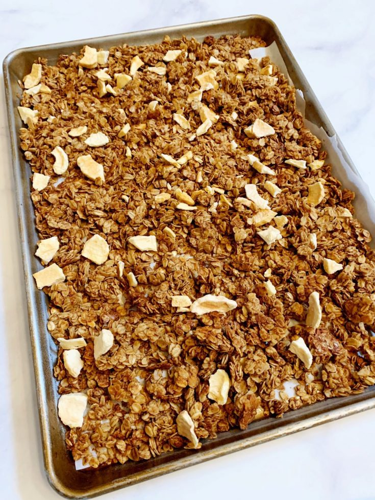 Healthy Apple Cinnamon Flax Seed Granola